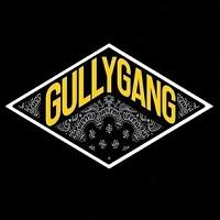 Gullygang